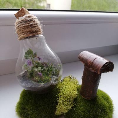 Michal - příroda ve skle